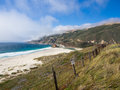 Beautiful landscape of pacific coastline big sur on highway ca usa Royalty Free Stock Images