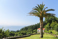 Beautiful landscape with palmtree and house in San Andres, Galic Royalty Free Stock Photo