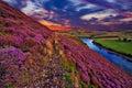 Beautiful Landscape Of Scottis...