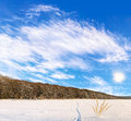 Beautiful landscape of winter field with the animal tracks Royalty Free Stock Photos