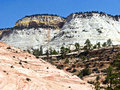 Beautiful landscape in zion national park utah Stock Photography