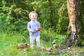 Beautiful laughing baby girl having fun gathering mushrooms in an autumn forest Royalty Free Stock Photography