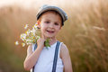 Beautiful little boy in daisy field on sunset Royalty Free Stock Photo