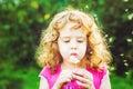 Beautiful little curly girl blowing dandelion horizontal shot instagram filter Royalty Free Stock Image