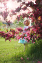 Beautiful Little Toddler Girl Standing Under Flowering Crabapple Royalty Free Stock Photo