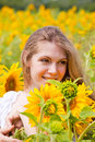 Beautiful long haired young woman field sunflowers Stock Photos