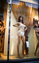 Beautiful mannequin in a shop window Stock Images