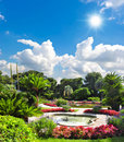 Beautiful mediterranean garden. french riviera Royalty Free Stock Photography