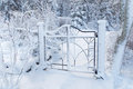 Beautiful metal gate covered with snow Royalty Free Stock Photo