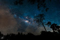 Beautiful milky way galaxy on night sky in the forest park