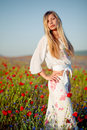 Beautiful model posing in poppy field Royalty Free Stock Photos