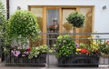 Beautiful modern terrace with a lot of flowers and herbs Royalty Free Stock Photos