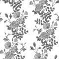 Beautiful monochrome pattern of branches of roses
