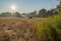 Beautiful morning sun rays blue sky farmers field in the early in the single hay bale in harvest time green bushes and trees in Stock Photos
