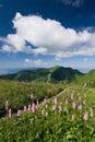 Krásné horské krajiny