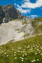Beautiful mountain landscape with flowers Stock Photo