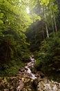 Beautiful mountain river Slovakia landscape mountain river sunse