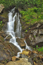 Beautiful mountain waterfall in summer Stock Photography