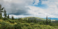Beautiful mountains panorama of the covered with forest carpathians Royalty Free Stock Photos
