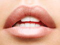 Beautiful natural lips on young adult Stock Images