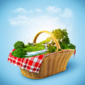 Beautiful nature basket rest out town Royalty Free Stock Images