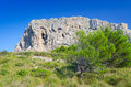 Beautiful nature on majorca tropical landscape of rocky coast Stock Photography
