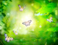 Beautiful nature spring green background butterfly Stock Photos
