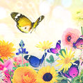 Beautiful nature wold art holiday abstract colorful flowers and butterflies against magic sun light blurred background with Stock Images
