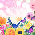 Beautiful nature wold art holiday abstract colorful flowers and butterflies against magic sun light blurred background with Royalty Free Stock Photography