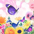 Beautiful nature wold art holiday abstract colorful flowers and butterflies against magic sun light blurred background with Stock Photography