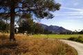 Beautiful new modern golf course fairway in Arizona Royalty Free Stock Photo