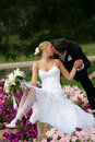 Beautiful newlyweds kissing Stock Photography