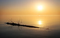 Beautiful ocean and snag sunrise in the sea Stock Photography