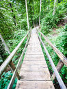Beautiful old wooden footbridge forest Stock Photos