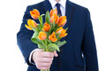 Beautiful orange tulips in male hand isolated on white Stock Photo