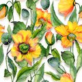 Beautiful orange welsh poppy flowers with green leaves on white background. Seamless floral pattern. Watercolor painting. Royalty Free Stock Photo