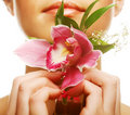 Beautiful with  orchid flower Stock Image