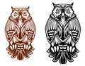 Beautiful owl mascot isolated on white background for sport team tattoo or emblem design Royalty Free Stock Images