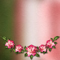 Beautiful painted rose on abstract background Royalty Free Stock Photo