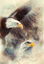 Beautiful painting of two eagles on an abstract background symbols of the usa airbrush one stretching his black wings to fly Royalty Free Stock Images