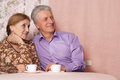 A beautiful pair of elderly people Royalty Free Stock Images