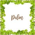 Beautiful palm tree green square frame