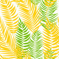 Beautiful Palm Tree Leaf  Silhouette Seamless Pattern Background Royalty Free Stock Photo