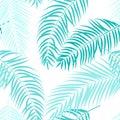 Beautiful Palm Tree Leaf Silhouette Seamless Pattern Background