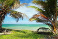 Beautiful palms on caribbean beach Royalty Free Stock Image