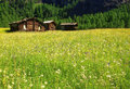 Beautiful panoramic postcard view of picturesque rural mountain scenery in the Alps with traditional old alpine mountain cottages Royalty Free Stock Photo
