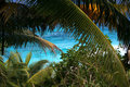 Beautiful paradice sea through palm trees. Royalty Free Stock Images