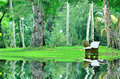 Beautiful park or garden with reflection of stone bench image Royalty Free Stock Photos