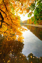 Beautiful park pond in autumn at sunset Royalty Free Stock Photography