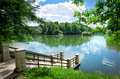 Beautiful park and river summer landscape Royalty Free Stock Images